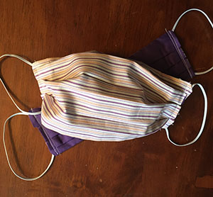 Mask Adult Purple Stripes